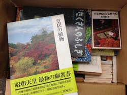 s-170821-05.jpg神奈川県シマムラ③.jpg